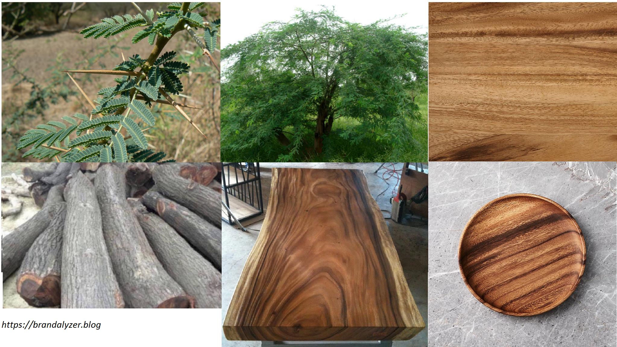 Acacia Vs Teak Wood And Straight Grain Vs Interlocked