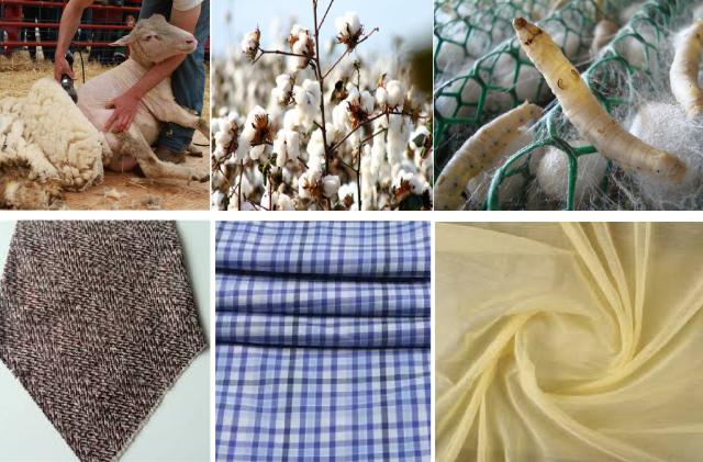 ClothSources-Brandalyzer